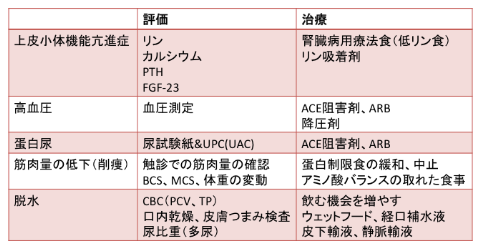 CKDの進行・予後悪化の要因の評価と治療