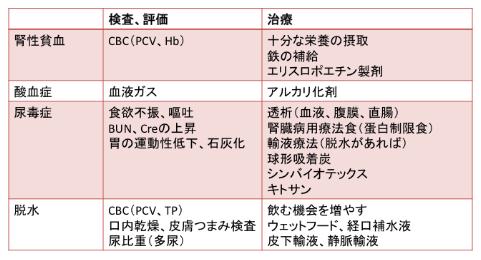 CKDでQOLを悪化させる要因の評価と治療